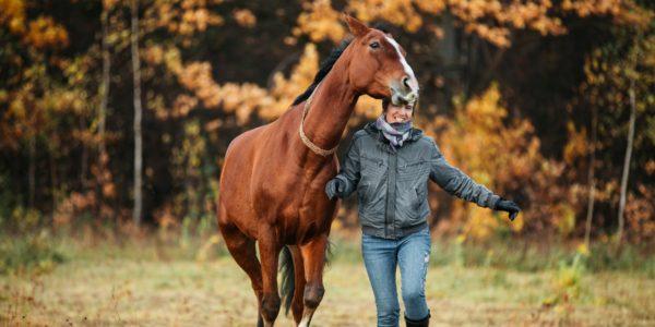 У каждой лошади должен быть свой человек